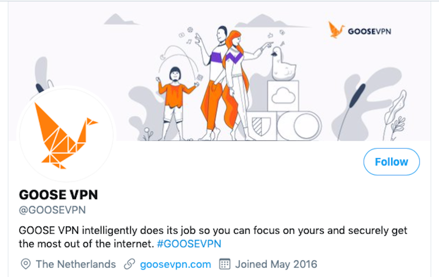 goose vpn about